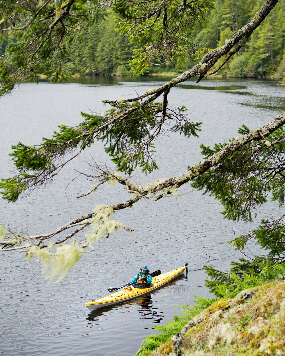 If you don't own a boat, you can still get out on the water this season. It can be relatively cheap. Slip into a kayak and explore. -