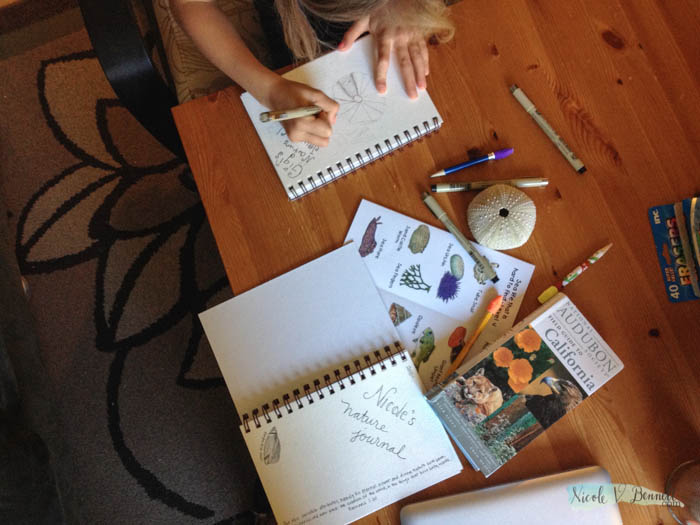 embarking on nature journaling for science-1