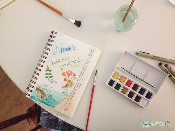 embarking on nature journaling for science-2