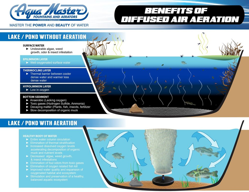 Keep it clean. - Aeration helps address a wide range of water quality problems related to excess algal and weed growth, bottom-sludge build-up, unpleasant odors, insect infestation, and unsightly waterscapes. It will also help support a more balanced ecosystem resulting in healthier aquatic life throughout.Learn MORE here!