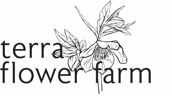 terraflowerfarm