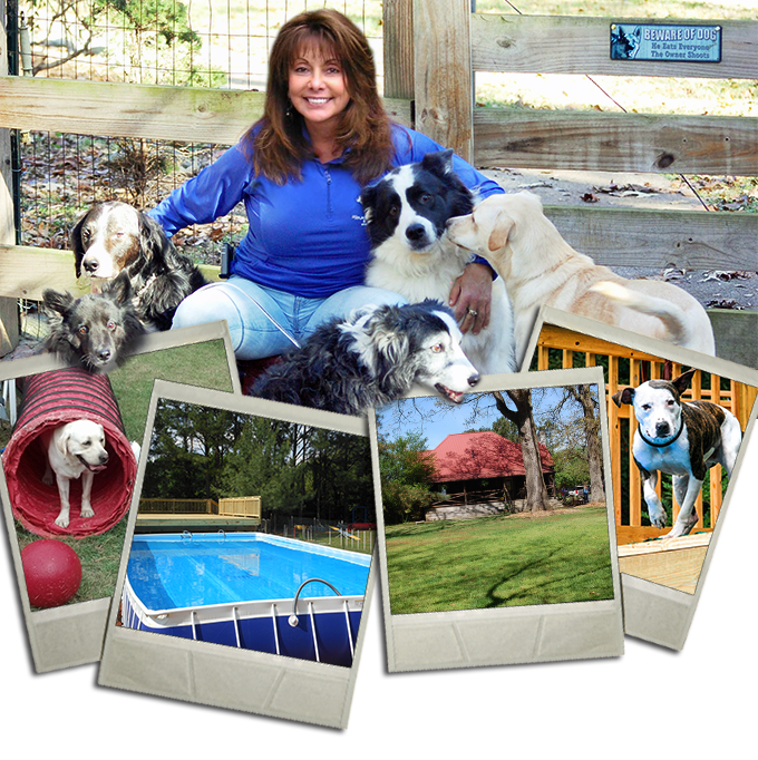 The premier dog training and behavior modification center in the Southeast. - With over 30 years of combined dog training and dog behavior modification experience, our trainers are recommended nationwide.
