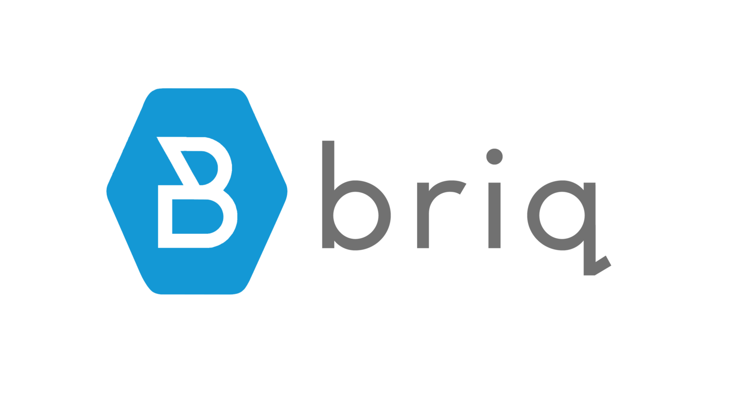 Briq: AI, Machine Learning, Blockchain for Construction