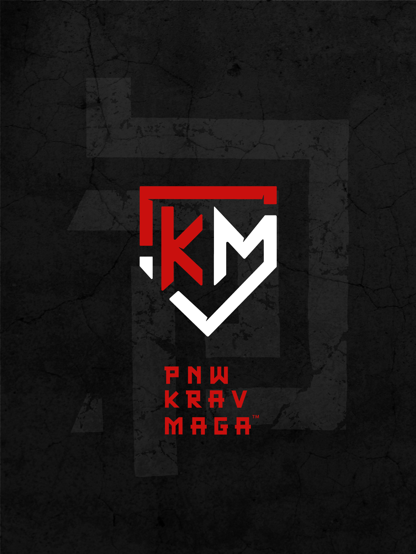 Pacific Northwest Krav Maga No Classes Pnw Krav Maga