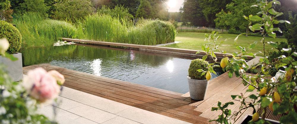 Jardin d'eau - Découvrez une technologie de bassin intelligente et révolutionnaire.