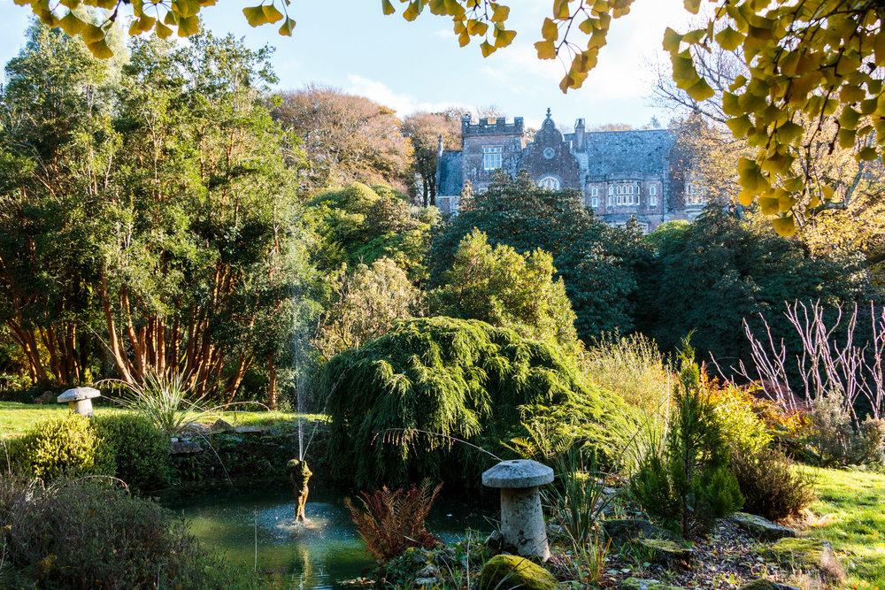 dansoleyphotography-lukesland-gardens-autumn-2018-11.jpg
