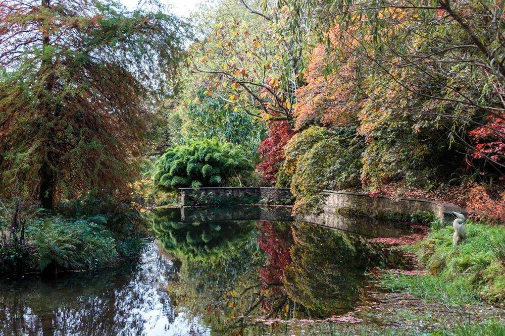 lukesland-gardens-autumn-dan-24.jpg