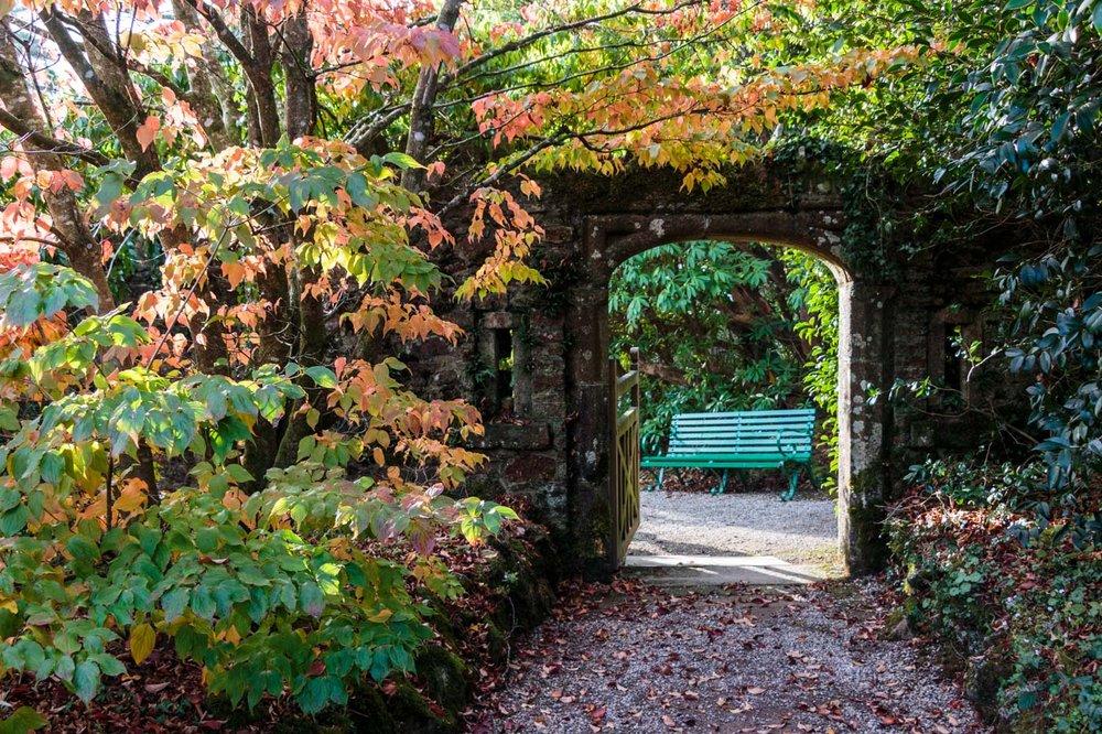 lukesland-gardens-autumn-dan-21.jpg