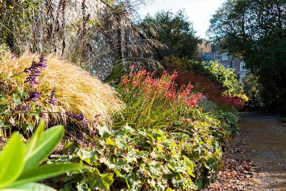 lukesland-gardens-autumn-dan-16.jpg