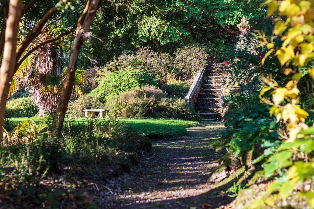 lukesland-gardens-autumn-dan-14.jpg