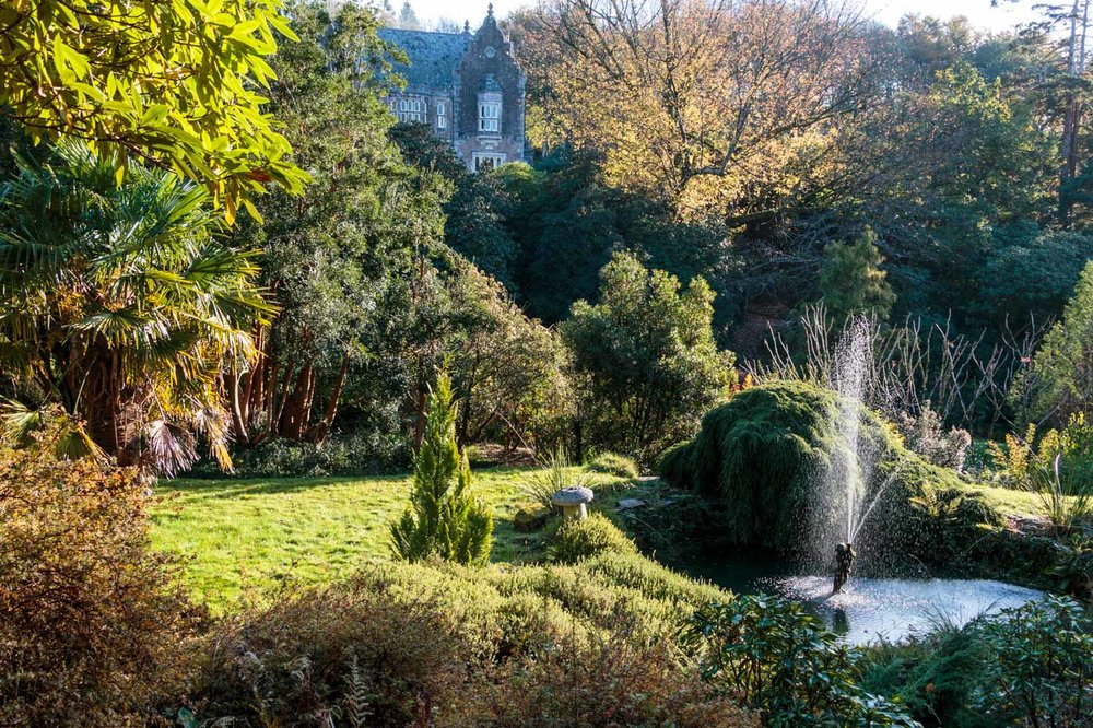 lukesland-gardens-autumn-dan-13.jpg
