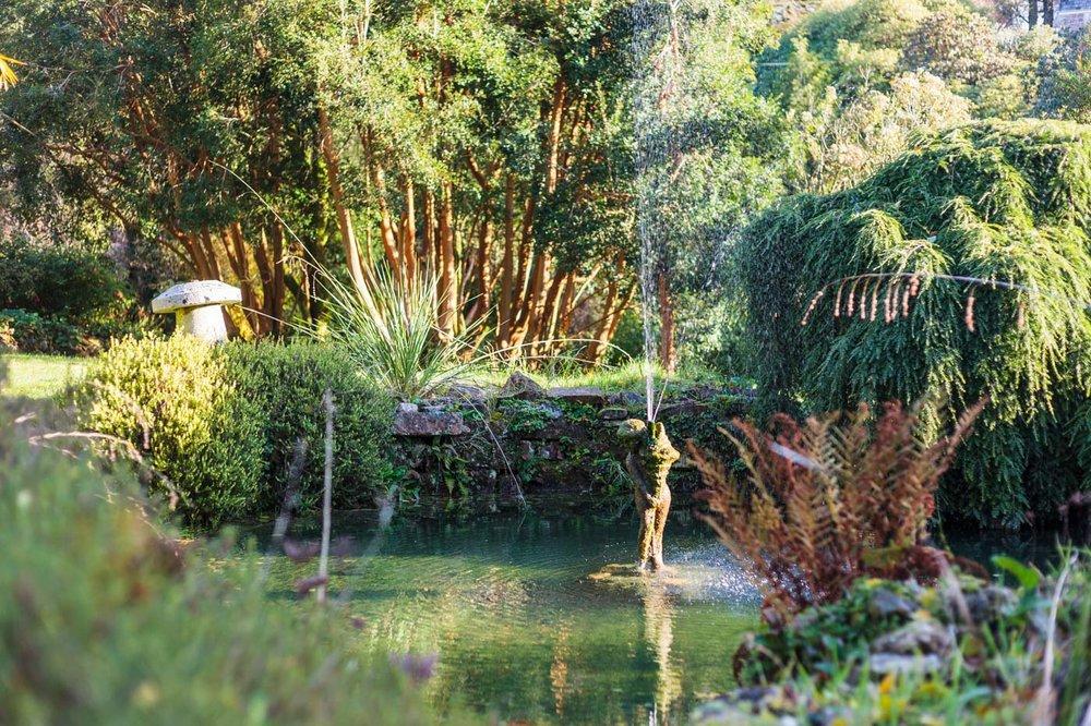 lukesland-gardens-autumn-dan-12.jpg