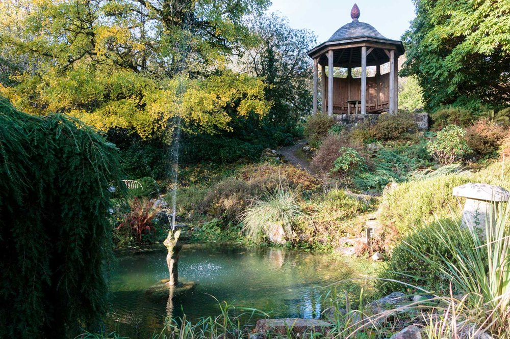lukesland-gardens-autumn-dan-10.jpg