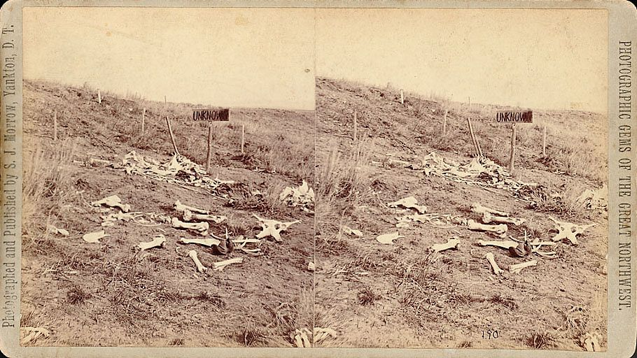 Photo of bones and remains of soldiers and horses on the Little Bighorn Battlefield. Photo taken on the Captain George K. Sanderson Expedition to the battlefield. The same expedition that buried the remains of the soldiers where they fell. and erected a monument to the fallen. Photo taken August 1876, the first expedition since the battle.