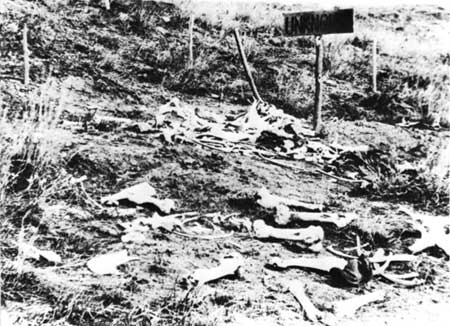 Remains on the Battlefield. August 1876