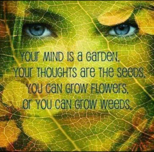 Our Mind is a Garden.jpg