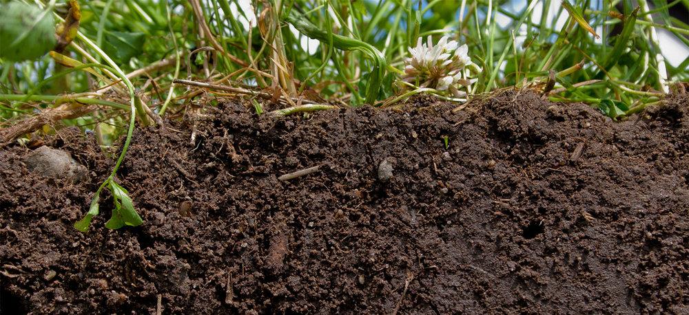 fa-sustainable-soil-cross-section.jpg