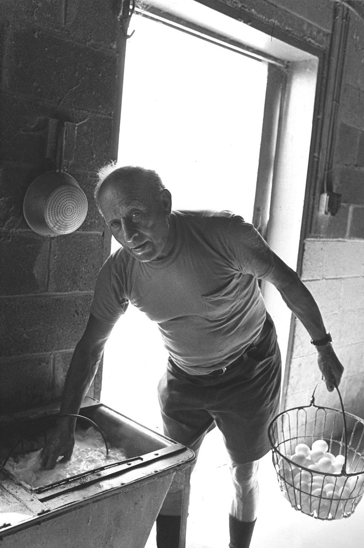 Morris Metterman