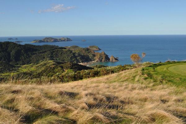NewZealand-Viewtosea-backdrop (1).jpg