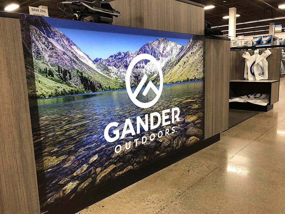 Gander 82.jpg