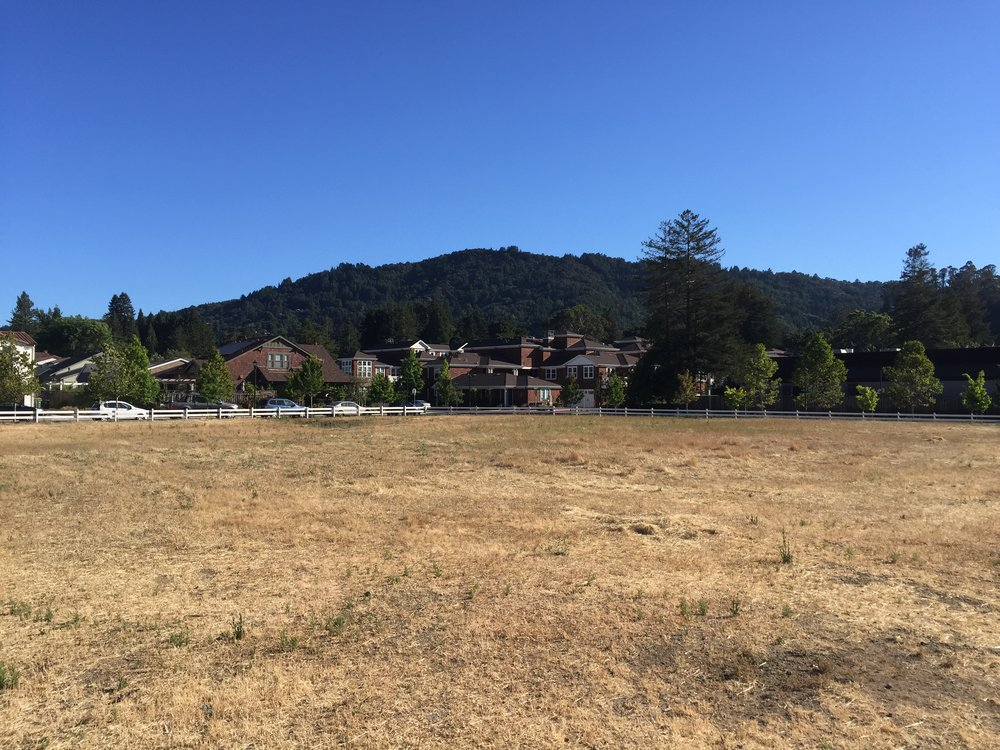 View from future site of the Commons at Larkspur and the Larkspur Library Community Center