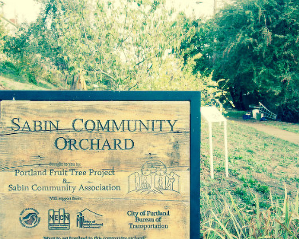 Sabin Community Orchard - Northeast Portland