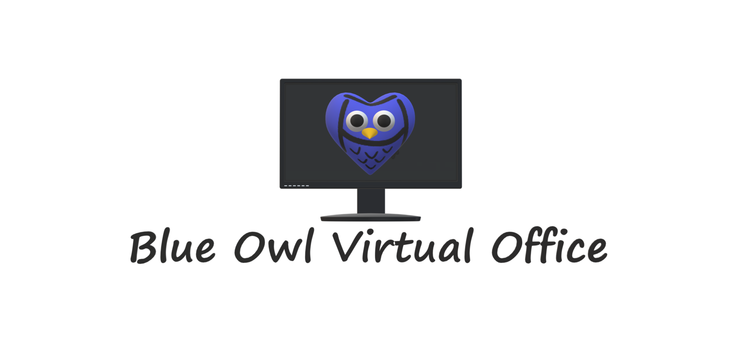 Blue Owl Virtual Office