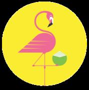 coconut-cult-logo_300x90@2x.png