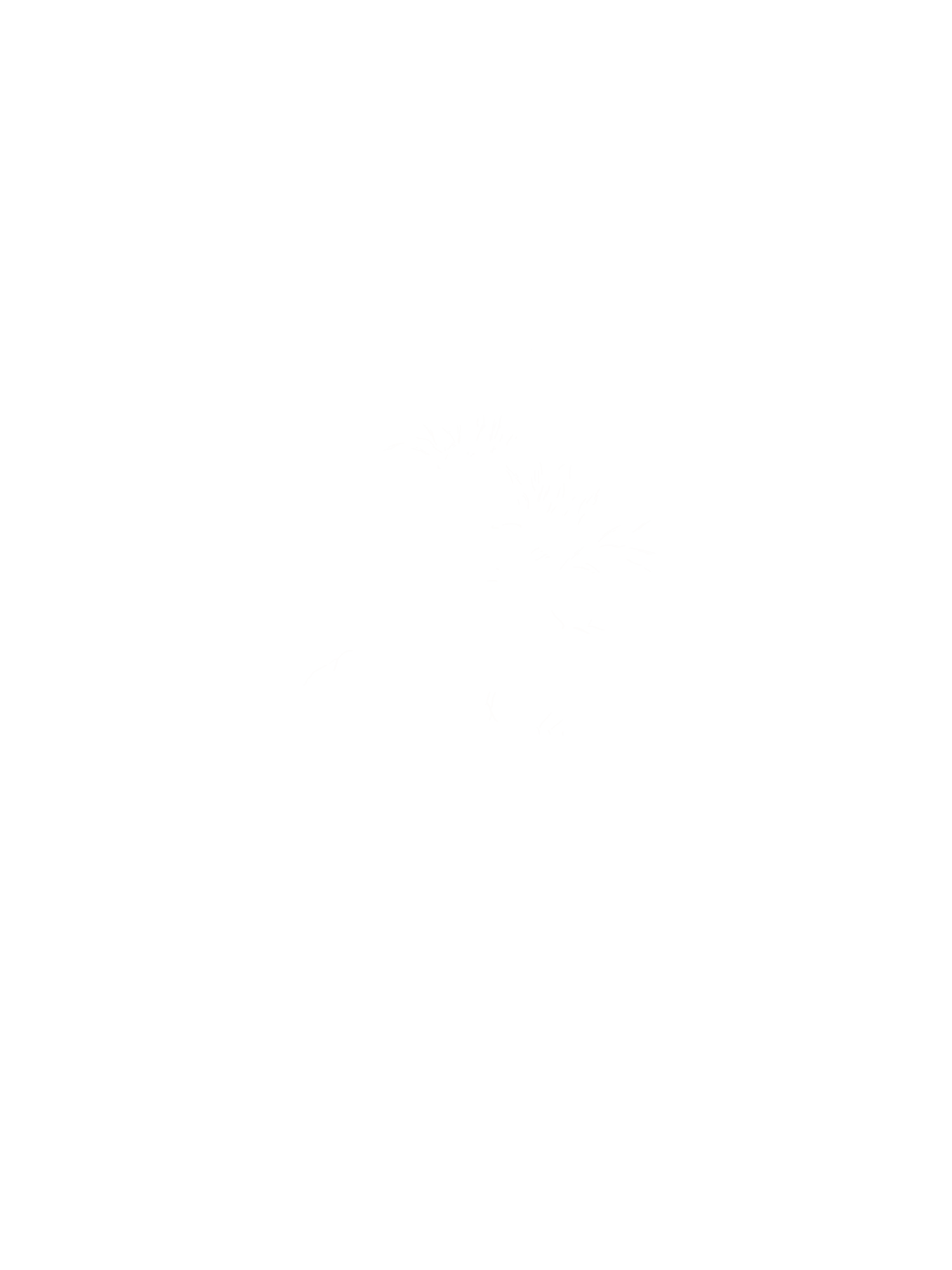 Jessa E Photographs