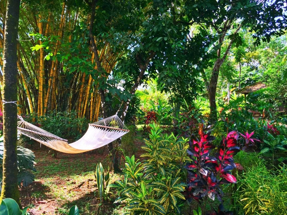 Bali Rica Costa Rica