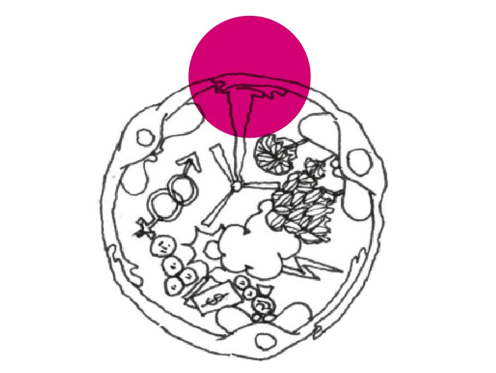 BWT_illustrations_3.png