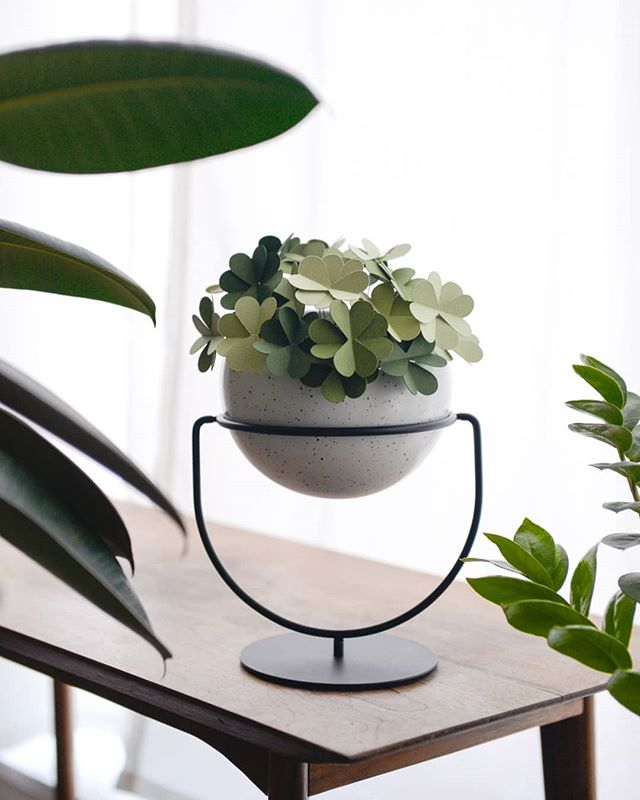 Inspired by Saint Patricks Day, we wanted to bring some luck into all of your homes with this paper clover DIY paired with our Nesta Planter. Looks pretty dreamy, right? 🍀  Head over to our stories to learn about how to make this on your own! 🍀  #Umbra #UmbraDesign #DIY #StPatricksDay 🍀  Product design: @sungwook_84  Project design & 📸: @adriennamatzeg Shout out to @officialcricut for the helping hand.