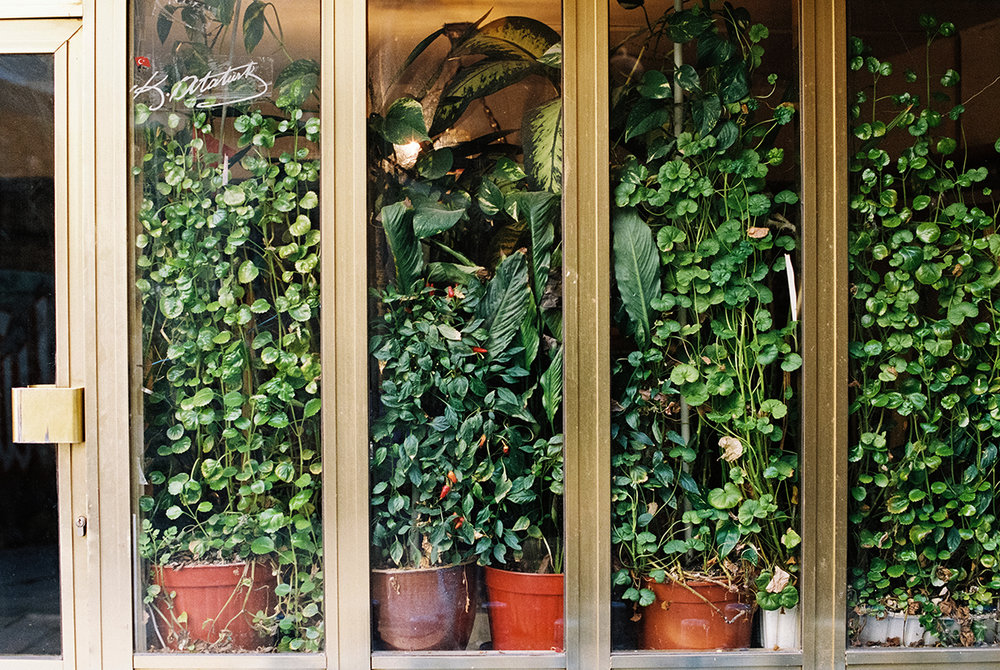 Green window, Istanbul.jpg