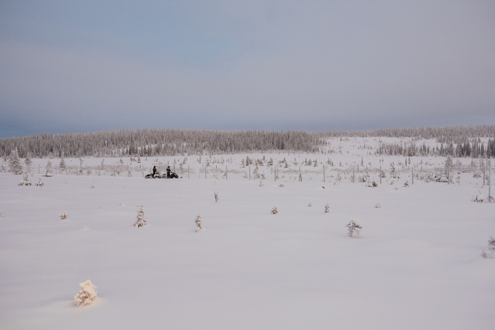 The border between Finland and Russia in the Lapland region reaches 380km of extension.  in this picture Russia is just few meters beyond the fence that is being checked by the patrol.