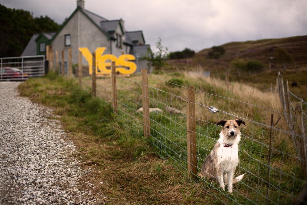 Scotland_Independence001.jpg