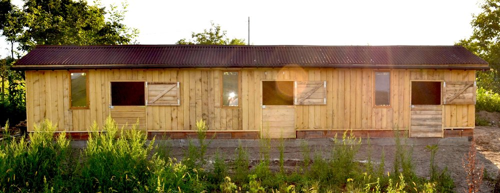 10 Animal House.JPG