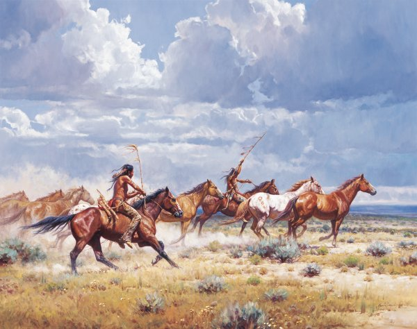 running-with-the-elk-dogs-by-martin-grelle-5674.jpg