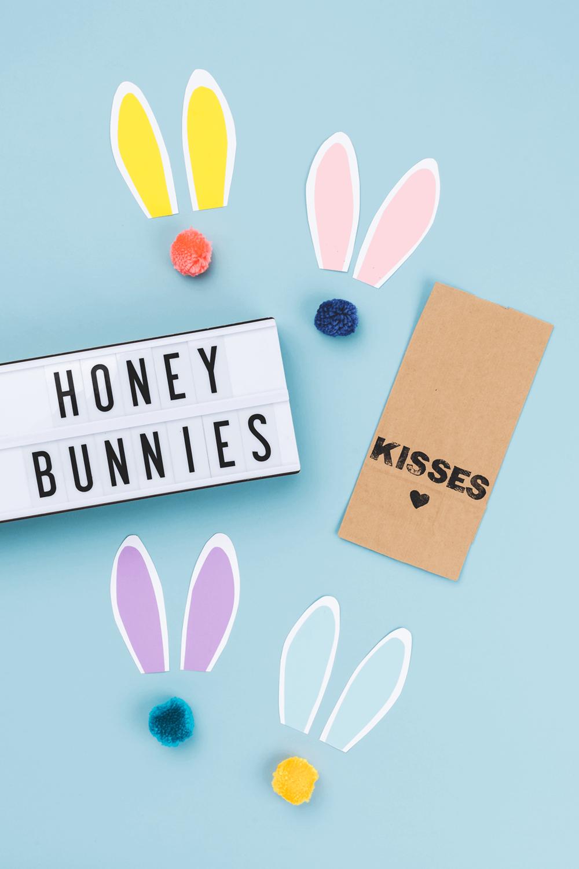 blog_honey bunnies 1.png