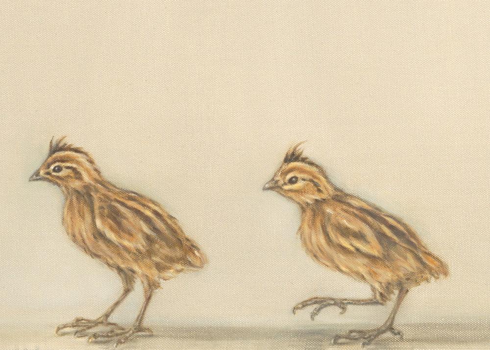 Quail and Chicks (detail 2)