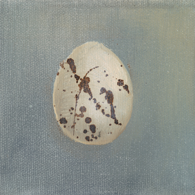 Feathers and Eggs -