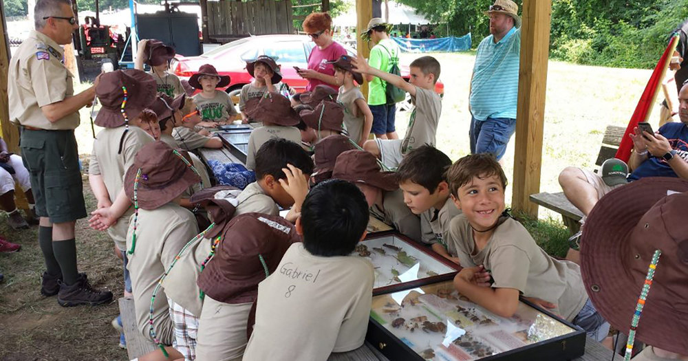 cubScouts1200x630.jpg