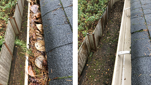 Before & After Gutters
