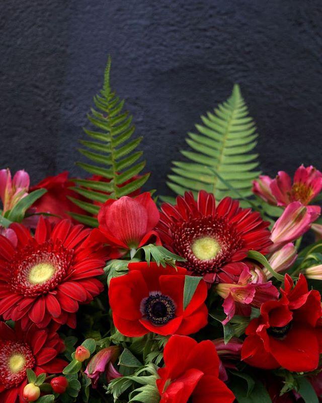 Silky smooth velvet anemones ❤ . . . #petrisfloral #floral #florist #floristry #floraldesigner #floraldesign #dsfloral #designer #boutique #shopsmall #kentuckyflorist #weddingflorist #floralwizardry #natural #bright #bloom #shoplocal #bellevueky #binvue #flowers #flora #anemones