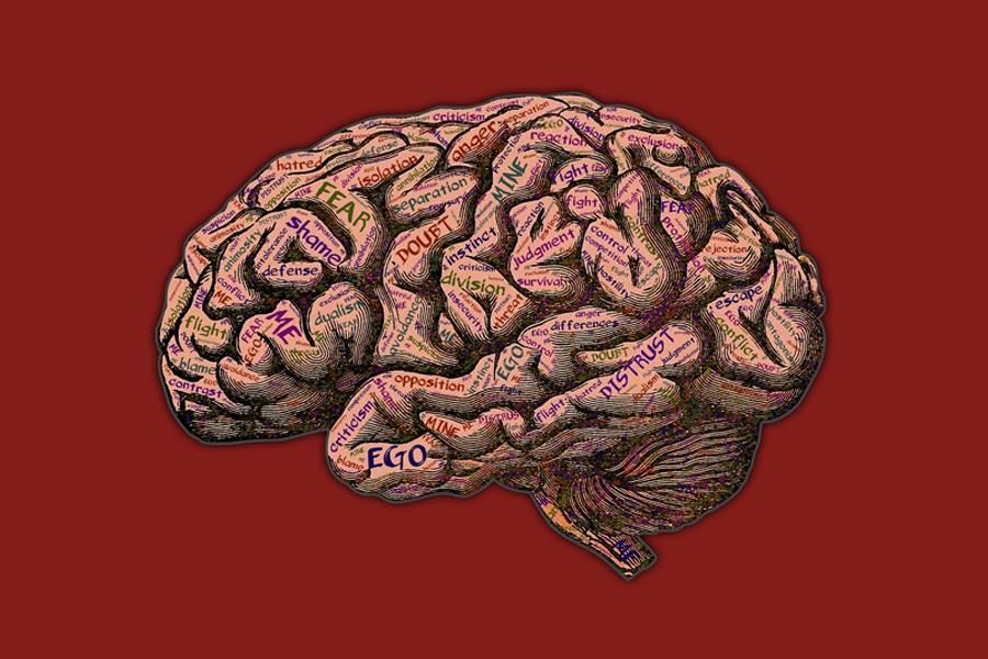 Mental+Health+Study.jpg