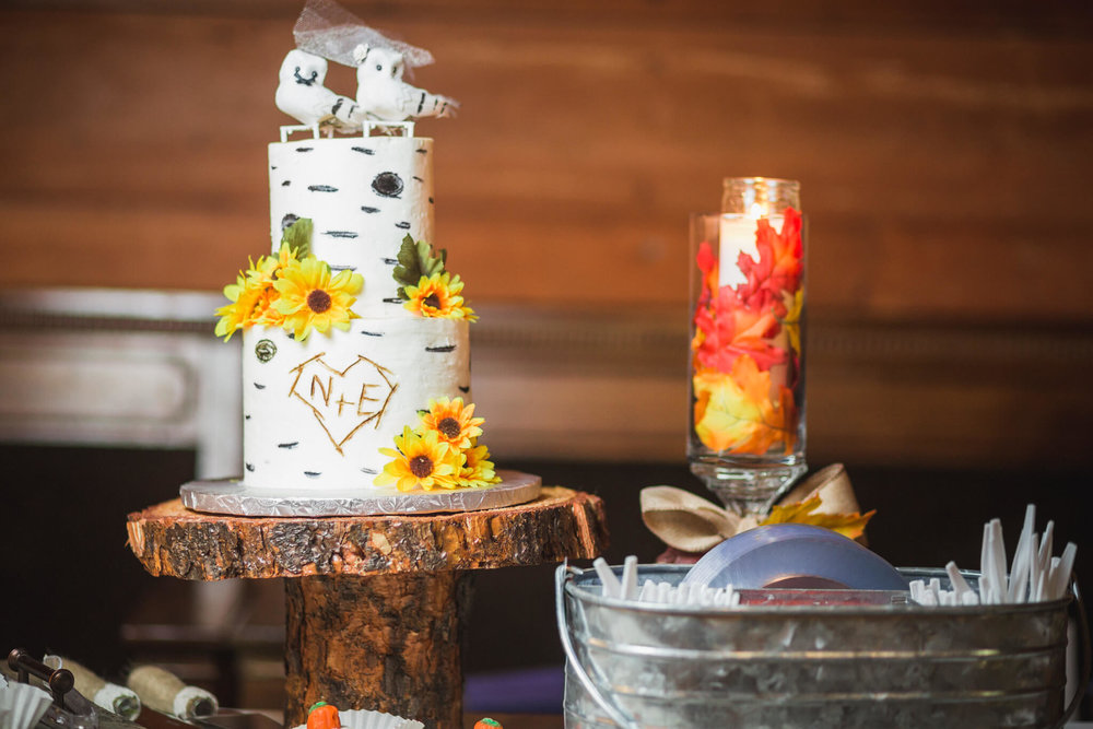 Mitcham's Barn Wedding-197.JPG