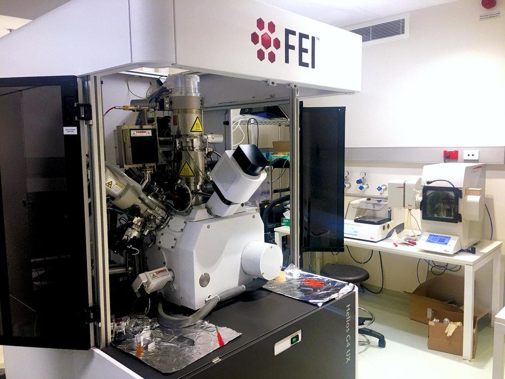 The Cryo-FIB/SEM at the Monash Ramaciotti Electron Microscopy Centre