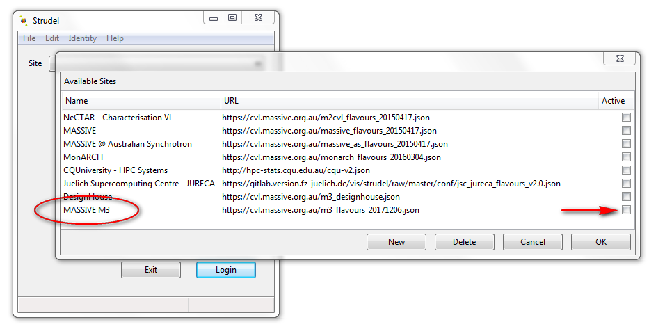 Fig. 1: step 1 - select MASSIVE M3 from the available sites