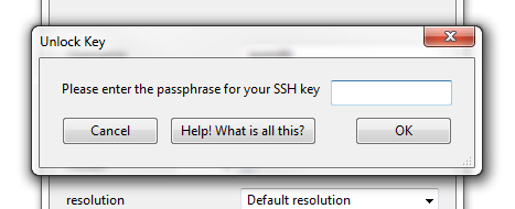 Fig. 6: step 1 - enter a passphrase (applies only if you selected    Remember me on this computer   )