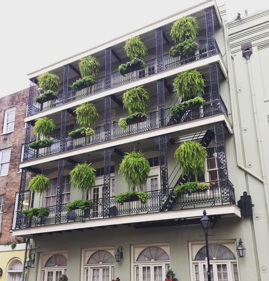 New Orleans image 1