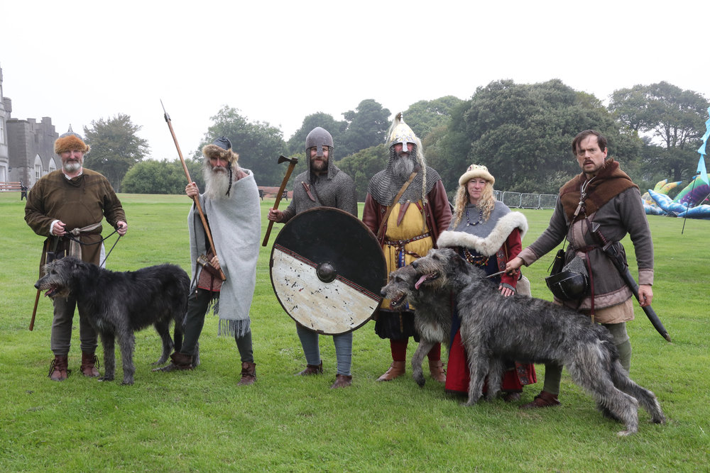 VIKINGS & WOLFHOUNDS